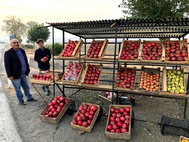 Feride Buyuran Tours | Fruit Vendors in Azerbaijan